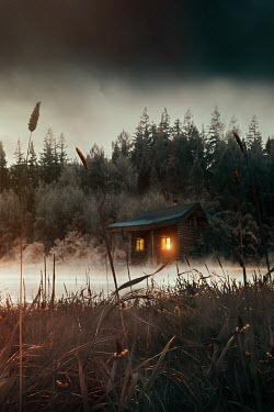Sandra Cunningham Old cabin isolated in tall grass by a lake