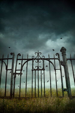Silas Manhood WROUGHT IRON GATE IN FIELD WITH STORMY SKY Gates