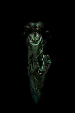 Meg Cowell GREEN SILK GOWN IN SHADOW Miscellaneous Objects