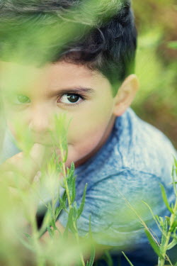 Mohamad Itani LITTLE BOY PEERING BEHIND PLANT OUTDOORS Children