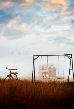 Sandra Cunningham TRICYCLE AND SWINGS WITH HOUSE IN SUMMERY COUNTRYSIDE Miscellaneous Objects
