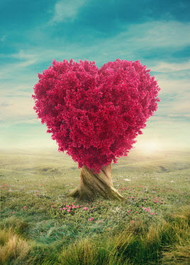 Elena Schweitzer Pink leaves on heart shaped tree