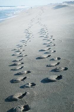 Lisa Bonowicz Footprints on beach