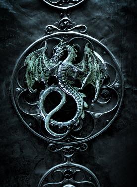Stephen Mulcahey Close up of dragon emblem