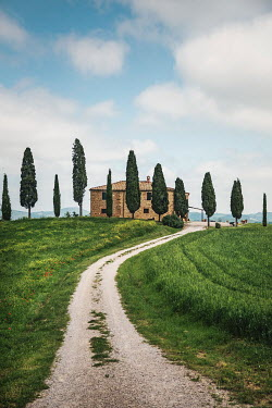 Evelina Kremsdorf House and cypress trees in San Quirico d'Orchia, Tuscany, Italy