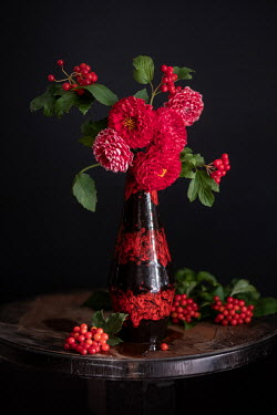Magdalena Wasiczek RED FLOWERS AND BERRIES IN VASE ON TABLE Flowers
