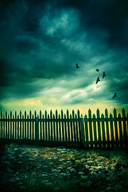Silas Manhood WOODEN FENCE WITH STORMY SKY Gates
