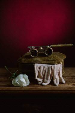 Magdalena Wasiczek BOX WITH ROSE GLOVES AND OPERA GLASSES Miscellaneous Objects