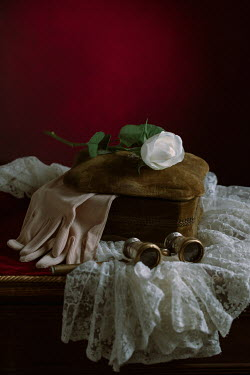 Magdalena Wasiczek BOX WITH OPERA GLASSES LACE GLOVES AND ROSE Miscellaneous Objects