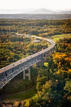 Evelina Kremsdorf Bridge over forest
