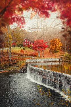 Evelina Kremsdorf Autumn trees and waterfall in Guilford, Vermont, USA