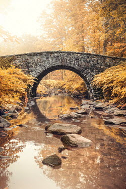 Evelina Kremsdorf Bridge over stream in autumn forest , Sleepy Hollow, New York, USA