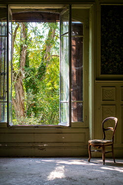 Elly De Vries Tree through open window of abandoned house
