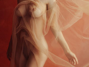 Ihor Ustynskyi Naked young woman under tulle