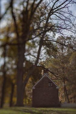 Lisa Bonowicz Brick house under trees