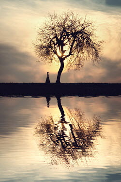 Magdalena Russocka silhouettes of woman and tree by water Women