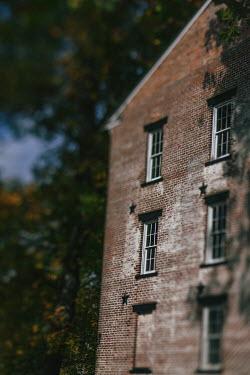 Lisa Bonowicz Brick house and trees