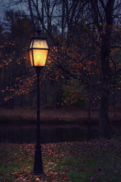 Lisa Bonowicz Street light in park during autumn
