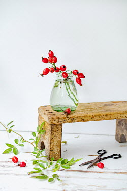 Magdalena Wasiczek Red berries in vase on wooden stool