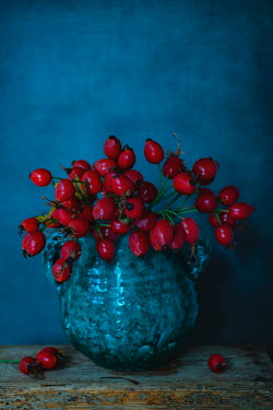 Magdalena Wasiczek Red berries in vase