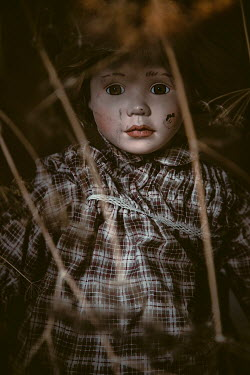 Des Panteva SHABBY DOLL LYING ON GROUND AT NIGHT Miscellaneous Objects