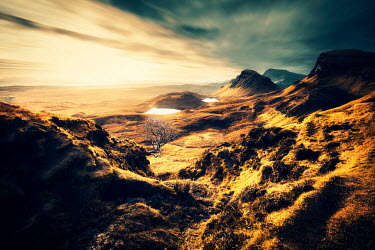 David Keochkerian GOLDEN LANDSCAPE WITH HILLS AND LAKES Desert