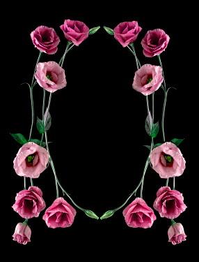 Magdalena Wasiczek OVAL FRAME OF PINK FLOWERS Flowers
