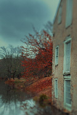 Lisa Bonowicz OLD HOUSE BY RIVER WITH RED TREE Houses