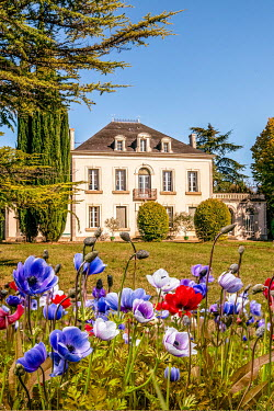 Elly De Vries MANSION WITH FLOWERS IN SUMMERY GARDEN Houses