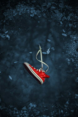 Ildiko Neer Child's red sneaker in pond