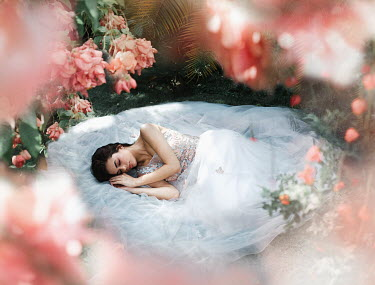 Eve North Young woman in white dress sleeping under rose bush