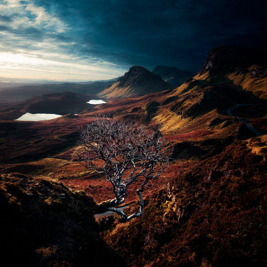 David Keochkerian Bare tree and mountains under clouds
