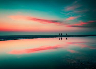 David Keochkerian Silhouette of people and dog walking on beach at sunset