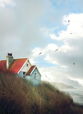 Mark Owen Seagulls flying over cottage by sea