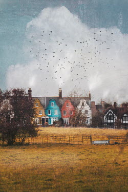 Anna Buczek Birds flying over houses by field