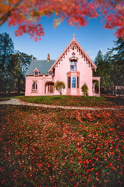 Evelina Kremsdorf Autumn leaves and pink house