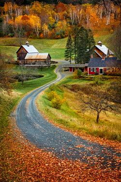 Evelina Kremsdorf Driveway and farm during autumn in Sleepy Hollow, Woodstock, Vermont, USA