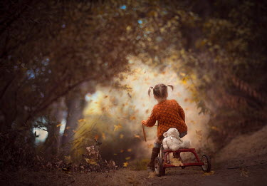 Jessica Drossin Girl riding tricycle with her teddy bear in forest