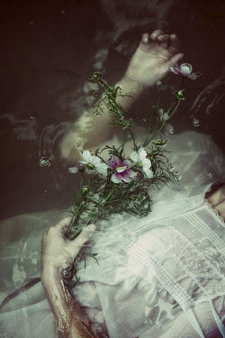 Natasza Fiedotjew hands of woman in water holding flowers
