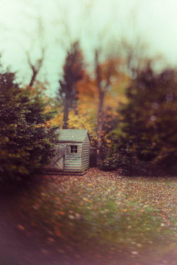Lisa Bonowicz WOODEN GARDEN SHED WITH AUTUMN TREES Miscellaneous Buildings
