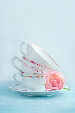 Magdalena Wasiczek STACK OF CHINA TEACUPS WITH PINK ROSE Flowers