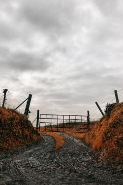 Maria Petkova MUDDY COUNTRY LANE WITH METAL GATE Gates