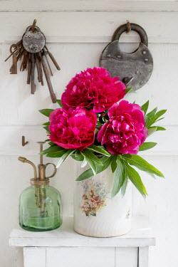 Magdalena Wasiczek PINK FLOWERS IN VASE WITH PADLOCK MISTER AND KEYS Flowers