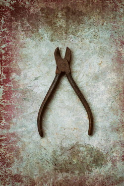 Mohamad Itani RUSTY OLD PLIERS ON SCRATCHED SURFACE Miscellaneous Objects