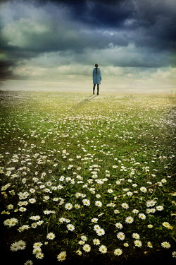 Silas Manhood WOMAN STANDING IN FIELD OF DAISIES BY SEA Women