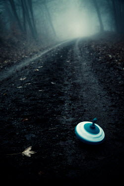 Carmen Spitznagel SPINNING TOP ON WINTRY COUNTRY ROAD Miscellaneous Objects