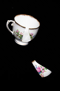 Alison Archinuk FLORAL TEACUP WITH BROKEN PIECE Miscellaneous Objects