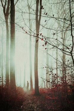 Dirk Wustenhagen Man in foggy forest