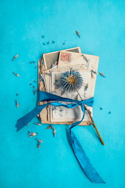 Magdalena Wasiczek Blue flowers with ribbon on envelopes