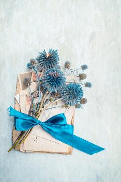Magdalena Wasiczek Blue flowers with ribbon on envelopes
